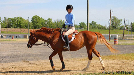 Immersion Education: Life learning on a horse farm