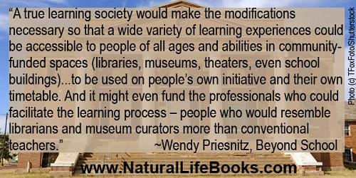 Learning societies by Wendy Priesnitz