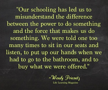 understanding power by Wendy Priesnitz