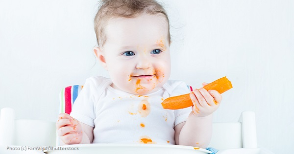 Feeding Themselves Real Food - Baby-Led Weaning