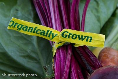 Organic Food is Healthier for Children