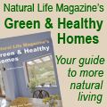 Green and Healthy Homes book