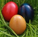 Greening Easter Celebrations