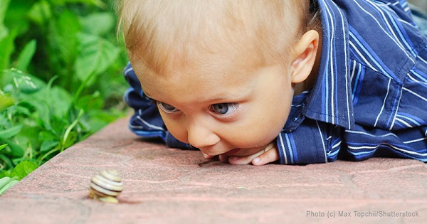 boy and snail