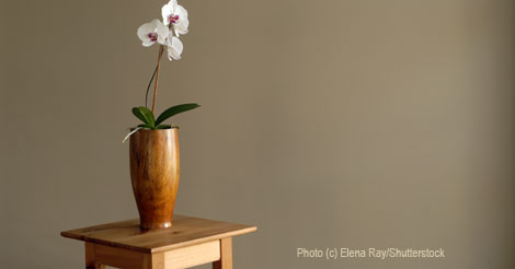 Feng Shui Your Way to a Simpler Home