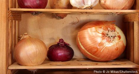 Back to Basics Food Storage