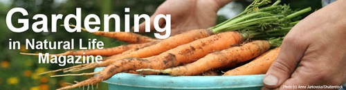 Organic Gardening Article Index