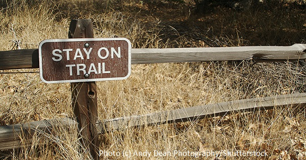 Hiking: The Grass is Always Greener (if you leave it that way)