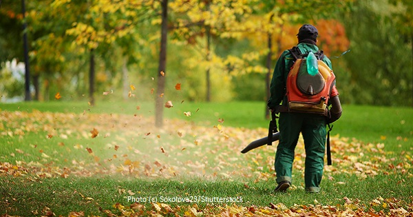 The Problems with Leaf Blowers