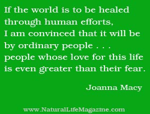 Quotes About Green Living Minimalism And Social Change