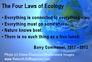 quotes about green living mini sm and social change