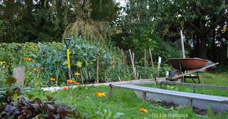 The Gentle Art of Raising a Garden