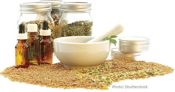 Seeds of Health