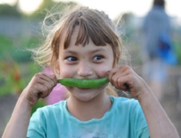 veggie kid byLilia Schwartz