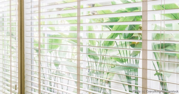 Window Coverings that are Stylish and Eco-Friendly
